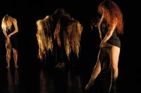 Teach Us To Outgrow Our Madness par la Cie Shalala/Erna Omarsdottir vendredi 3 août au théâtre de Périgueux dans le festival Mimos 2012