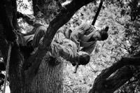 « Fallen Thoughts » par la Cie Studio Eclipse jeudi 1 et vendredi 2 août, Parc Gamenson de Périgueux à 16h  - Festival Mimos 2013 - photo Kurt Demey